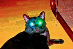 Blacky als Alien
